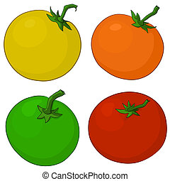 Tomatoes - Food, vegetables, four various fresh tomatoes,...