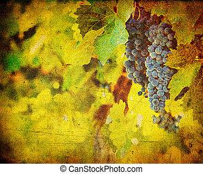 vintage image of grape