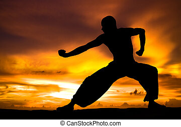 Martial Arts - Image of a Martial Artist Practises at Sunset