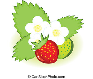 Ripe strawberries and green with flowers