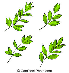 green leaves of various plants on a white background, set