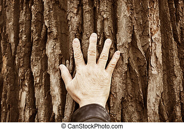 to nature with care - hand of the man on tree background,...