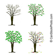 Four seasons tree vector illustration