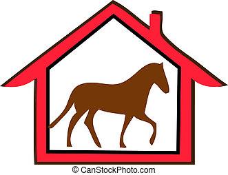 Horse farm - Horse in farm
