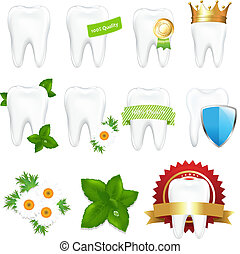 Tooths Set, Isolated On White Background, Vector...