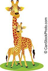 mãe, bebê, Girafa