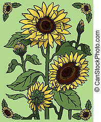 Sunflowers - A group of sunflowers, the perfect symbol of...