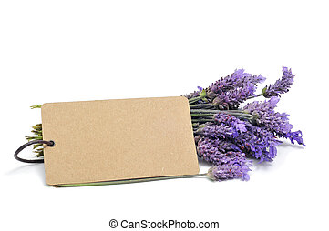 lavender - a bunch of lavender flowers with a blank paper...