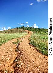 Road in portuguese farm at alentejo region.