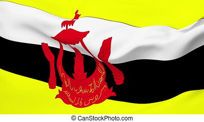 Flag of Brunei - Flag of the Brunei waving in the wind...