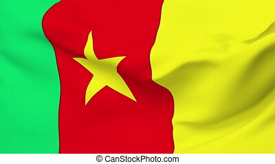 Flag of Cameroon - Flag of the Cameroon waving in the wind....