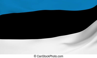 Flag of Estonia - Flag of the Estonia waving in the wind...
