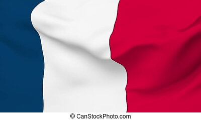 Flag of France - Flag of the France waving in the wind...