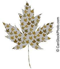 Retro Maple leaf