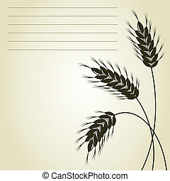 Wheat - Three ears of wheat on a grey background A vector...