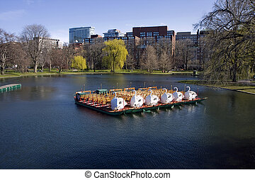 Pond in Boston Common garden - Boson Common public park in...
