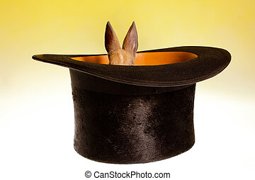 Small rabbit in a magic hat - Magic hat hiding a funny...