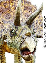 Triceratops, retrato