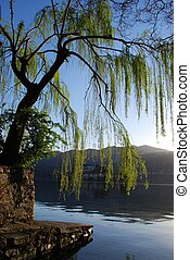 Beautiful lake - Panoramic view on Orta lake trees and...