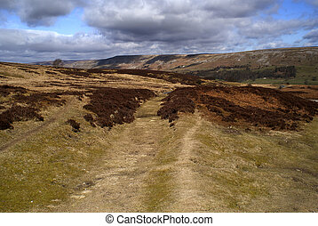 Moorland Lane, Yoekshire Dales, UK