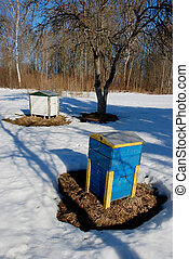 Bee hives in spring.