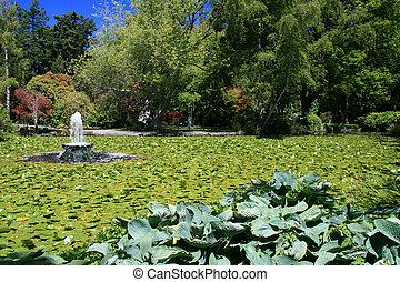 Beacon Hill Park, Victoria, BC, Canada - Beacon Hill Park in...