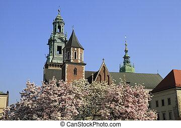 castle - Wawel