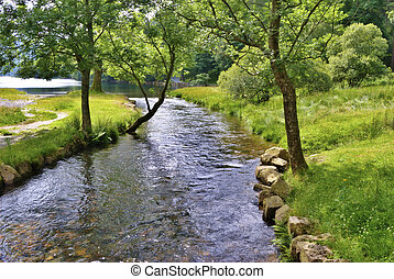 Peaceful river scene - Summer view of a stream flowing into...