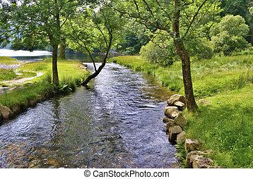 fredlig, flod, scen