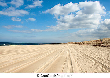Beach landscape with blue sky and white sand.