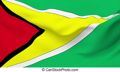 Flag of Guyana - Flag of the Guyana waving in the wind....