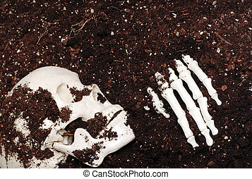 skeleton in dirt - skeleton skull and hand in dirt