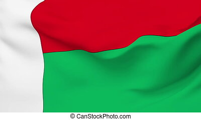 Flag of Madagascar - Flag of the Madagascar waving in the...