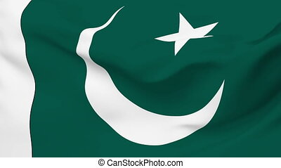 Flag of Pakistan - Flag of the Pakistan waving in the wind...
