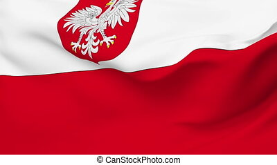 Flag of Poland - Flag of the Poland waving in the wind....