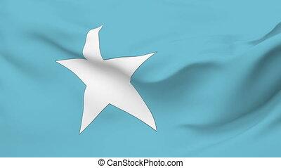 Flag of Somalia - Flag of the Somalia waving in the wind....