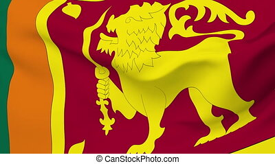 Flag of Sri Lanka - Flag of the Sri Lanka waving in the...