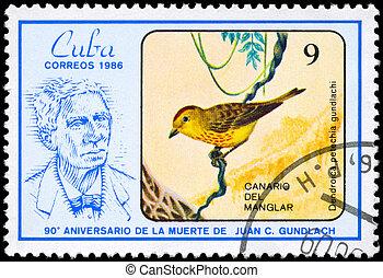 CUBA - CIRCA 1986 Warbler - CUBA - CIRCA 1986: A Stamp shows...