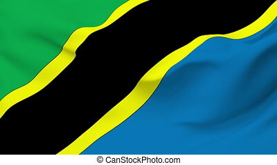 Flag of Tanzania - Flag of the Tanzania waving in the wind...
