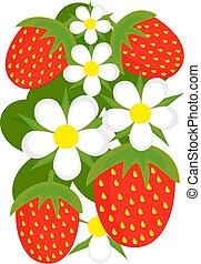 Strawberries background - Strawberries and flowers vector...