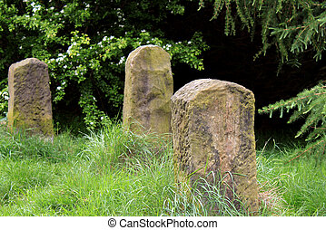 Old graves in countryside
