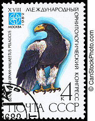 USSR - CIRCA 1982 Eagle - USSR - CIRCA 1982: A Stamp printed...