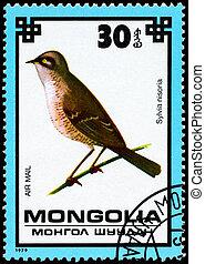 MONGOLIA - CIRCA 1979 Hawk Warbler - MONGOLIA - CIRCA 1979:...