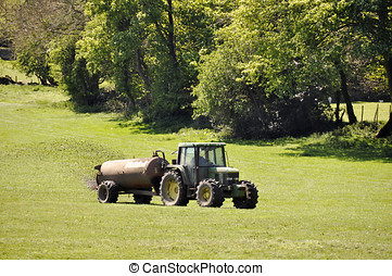 Muck spreading - Farmer drives tractor in field speading...