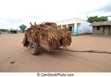 tobacco - wagon with Tobacco
