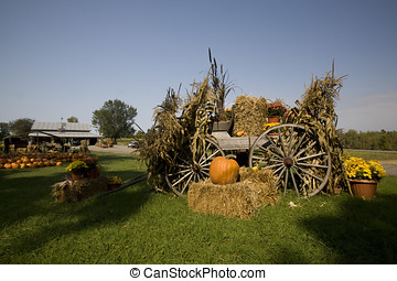 Fall Display - A well assembled decorative display at a farm...