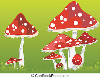 Fly agarics - Illustration of fly agarics on a green grass,...