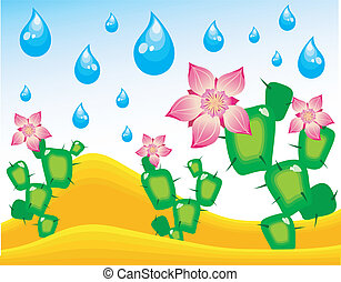 Cactuses blossoming under rain