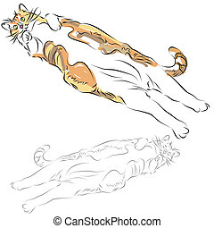 Fat Calico Cat Laying Down - An image of a fat calico cat...