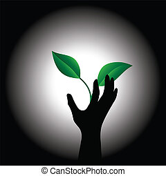 Plant and hand - Conceptual image of the plant and hand